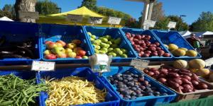 Midleton Farmer's Market