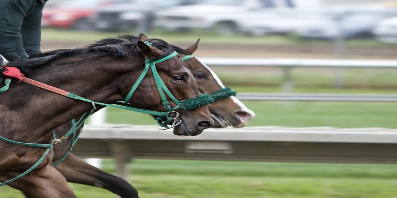Cork Race Cours