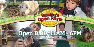 Rumley's Open Farm Cork