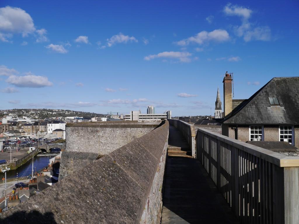 Elizabeth fort Cork -