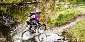 Ballyhoura Cycle Trails