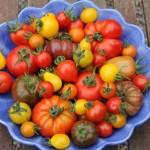 Vegetable bowl Ballymaloe House