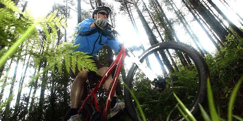 Mountain Biking in Ballyhoura