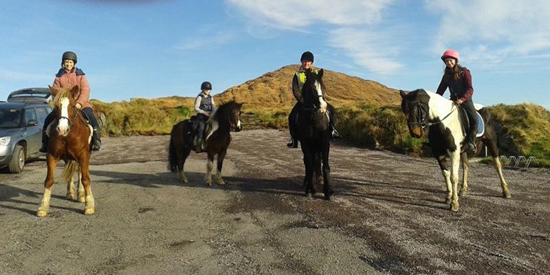 Sheeps Head Pony Trekking