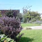 Donemark Rise Bed and Breakfast Gardens