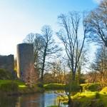 Pineforest House Bed & Breakfast - Blarney Castle