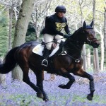 Ardfield Farmhouse Bed and Breakfast - Horse Riding