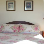 Elmville Bed and Breakfast Bedroom