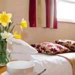 Galvins On The Green Bed and Breakfast - Double Room